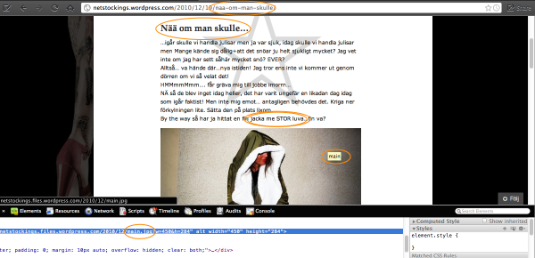 Zooma Blog How Googles algorithm Penguin affects on page optimisation resized 600