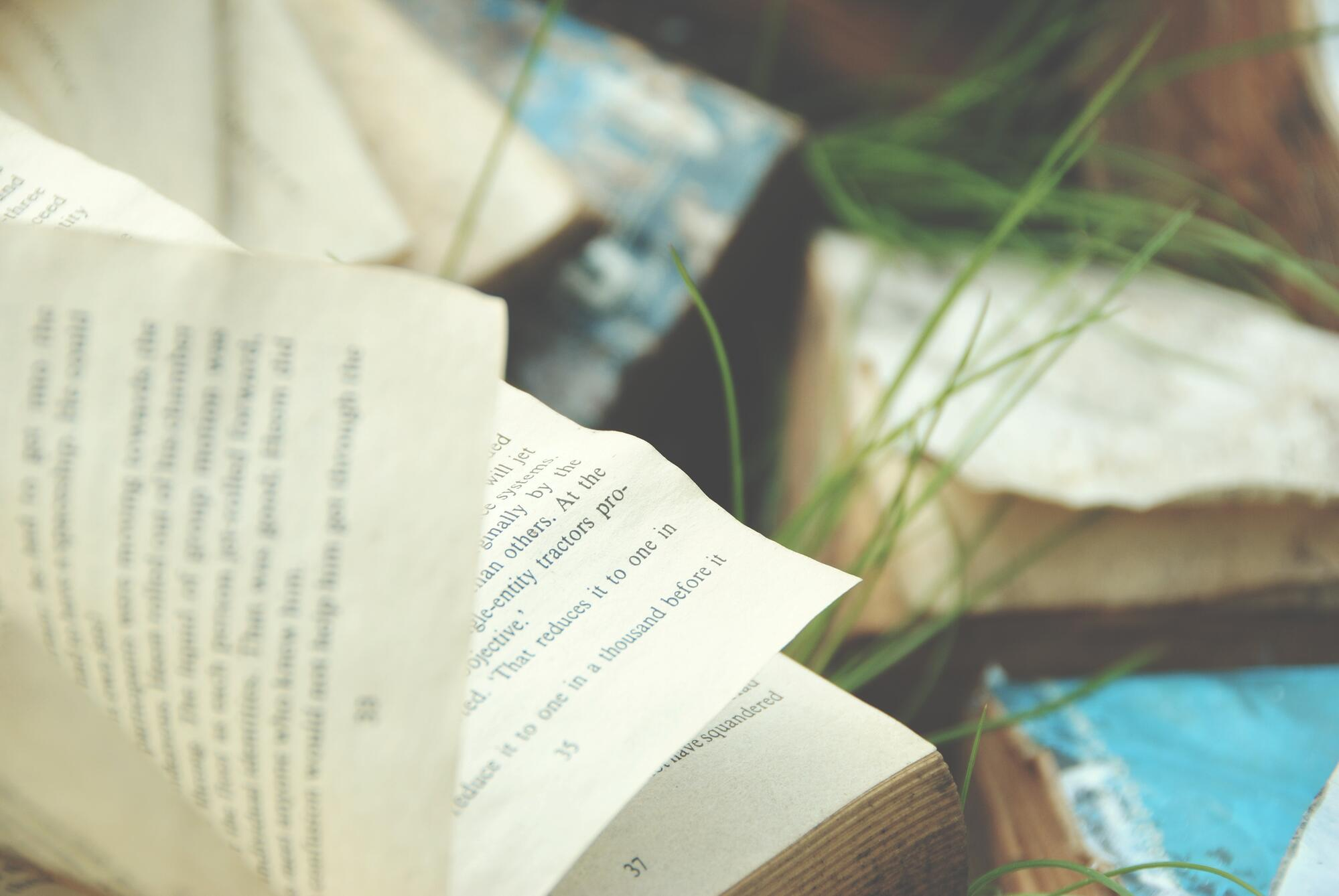 Books we are reading this summer